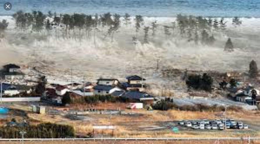 Christmas Tsunami.The Tsunami On Christmas Day Sutori