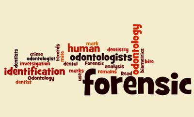 Forensic Odontologist Dentist Sutori