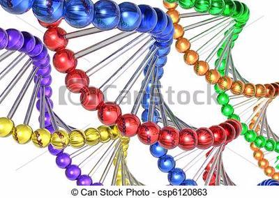 Desarrollo De La Genética Y Descubrimiento Del Adn Sutori