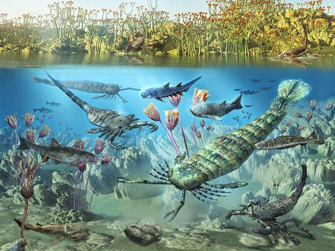 Silurian Period-(444 mya to 419 mya) First land... | Sutori