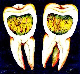 The History of Dentistry | Sutori