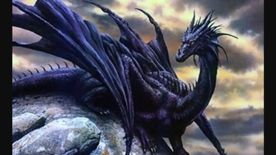 Dragons | Sutori
