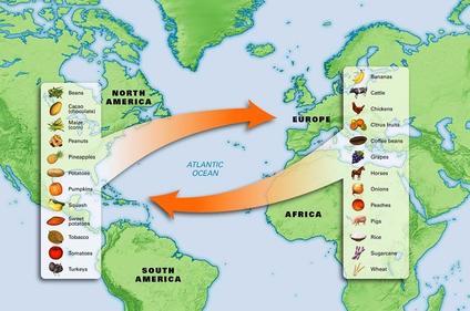 APUSH Period 1: 1491-1607 | Sutori